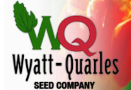 k-38-consulting-to-provide-interim-controller-services-for-wyatt-quarles-seed